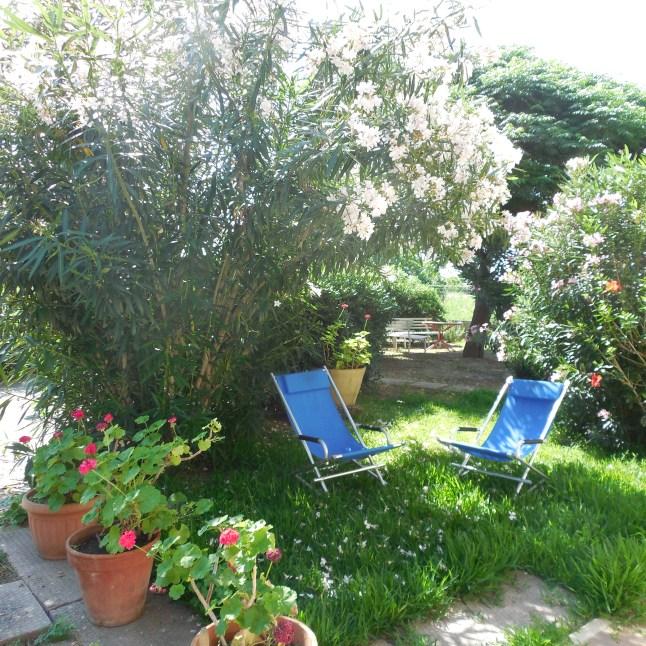 giardino piano terra